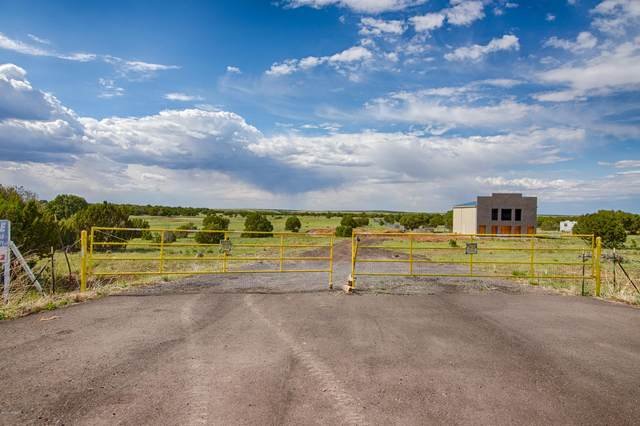 4500 E Deuce Of Clubs, Show Low, AZ 85901 (MLS #235714) :: Walters Realty Group