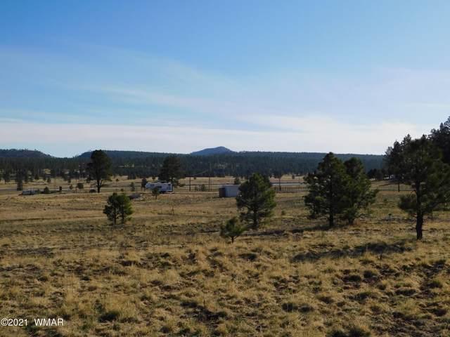 6 County Road 2110, Alpine, AZ 85920 (MLS #235727) :: Walters Realty Group