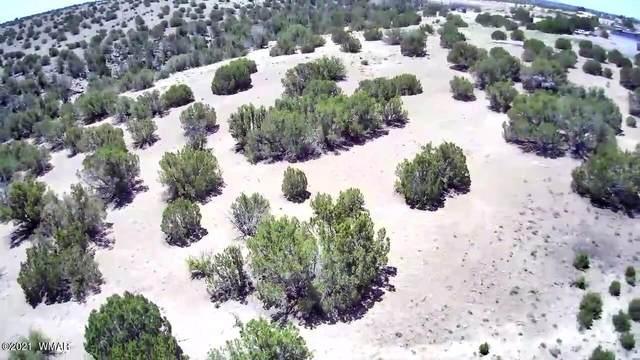 000 Moore Way, Concho, AZ 85924 (MLS #235822) :: Walters Realty Group