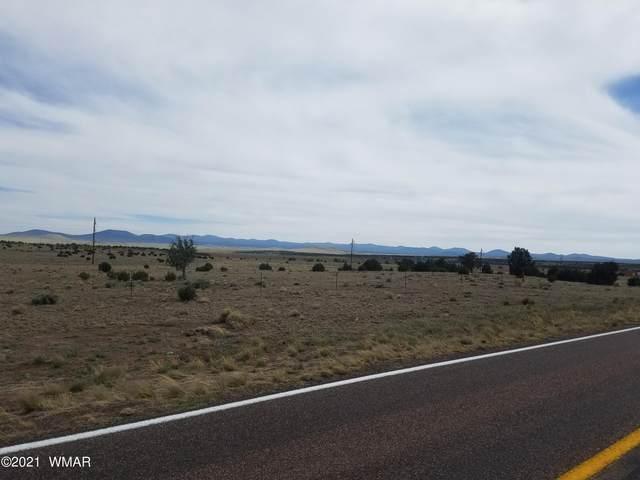 3 Cr 3459, Concho, AZ 85924 (MLS #235848) :: Walters Realty Group