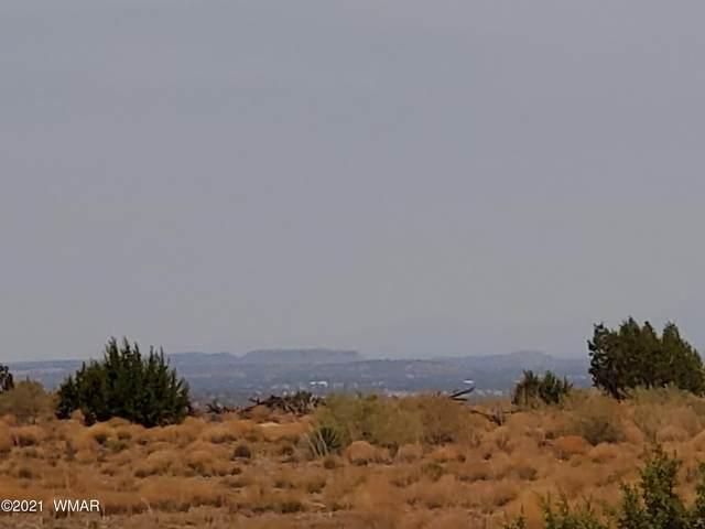 Lot 19 Ridgeview Ranch Drive, Snowflake, AZ 85937 (MLS #235855) :: Walters Realty Group