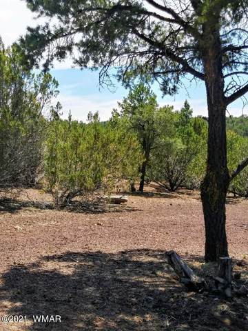 TBD County Rd 3197, Vernon, AZ 85940 (MLS #236030) :: Walters Realty Group