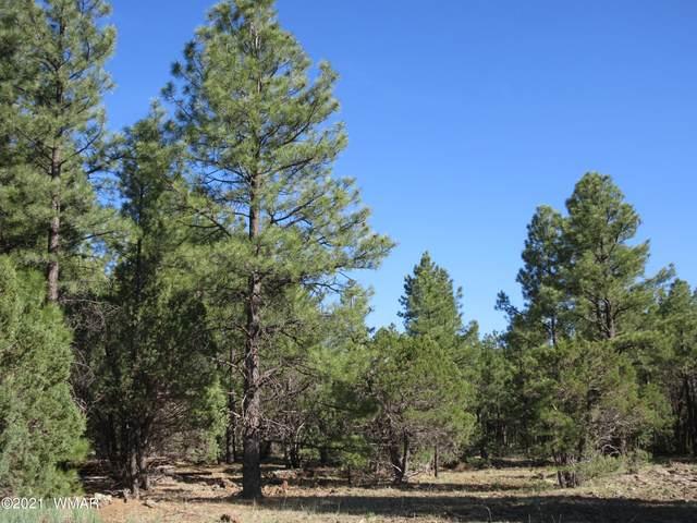 108 Lone Horseman, Lakeside, AZ 85929 (MLS #236118) :: Walters Realty Group
