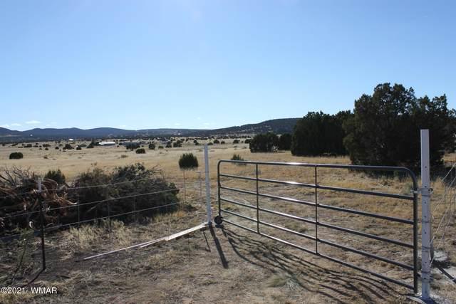 TBD Hwy 61 185C, Concho, AZ 85924 (MLS #238136) :: Walters Realty Group