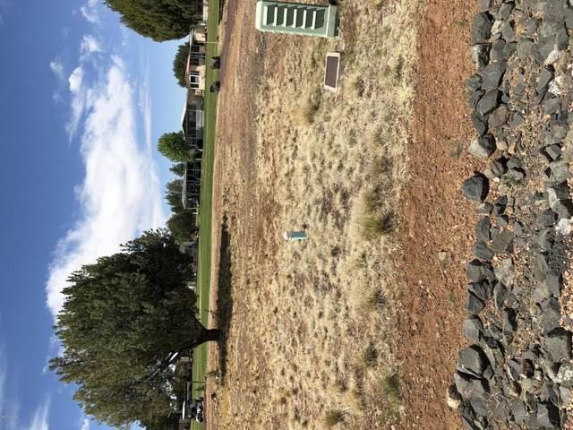 1966 Maritime Drive, Show Low, AZ 85901 (MLS #227121) :: Walters Realty Group