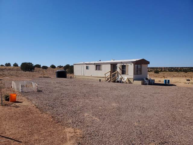 5248 Old Woodruff Rd Road, Snowflake, AZ 85937 (MLS #232123) :: Walters Realty Group