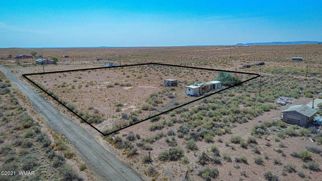 9219-9225 Northern S Northern Star Road, Holbrook, AZ 86025 (MLS #233977) :: Walters Realty Group