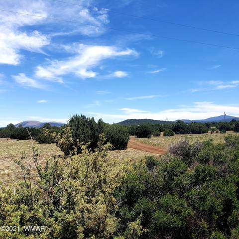 1782 Co Rd 3140, Vernon, AZ 85940 (MLS #235824) :: Walters Realty Group