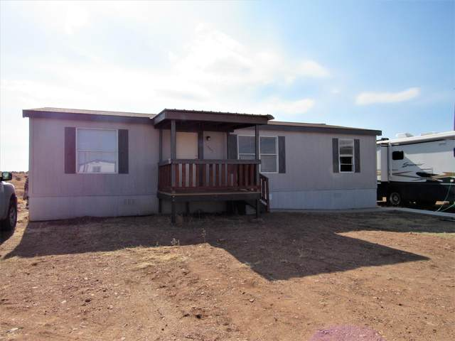1865 S Hereford Road, Taylor, AZ 85939 (MLS #232400) :: Walters Realty Group
