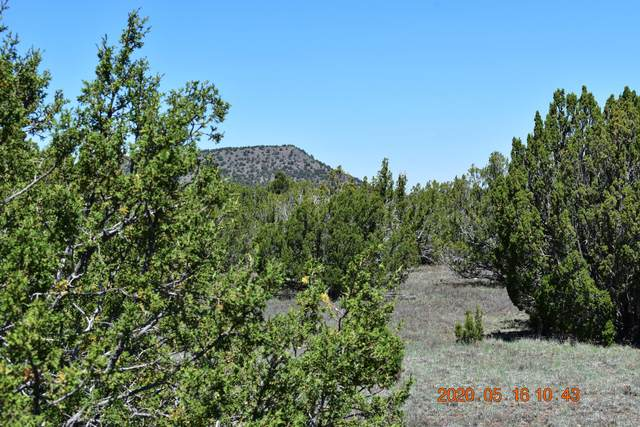 Lot 22 Winchester Trail, Vernon, AZ 85940 (MLS #228360) :: Walters Realty Group