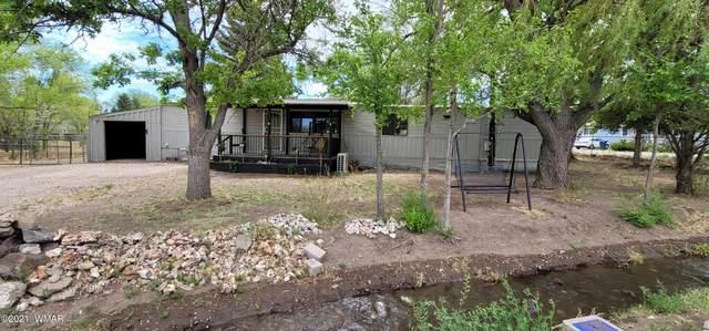 751 S Eagar Street, Eagar, AZ 85925 (MLS #233711) :: Walters Realty Group