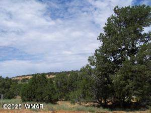 TBD 34 County Road 8067, Concho, AZ 85924 (MLS #232731) :: Walters Realty Group