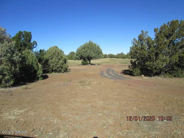 8246-LOT GV#64 Windward, Show Low, AZ 85901 (MLS #233070) :: Walters Realty Group
