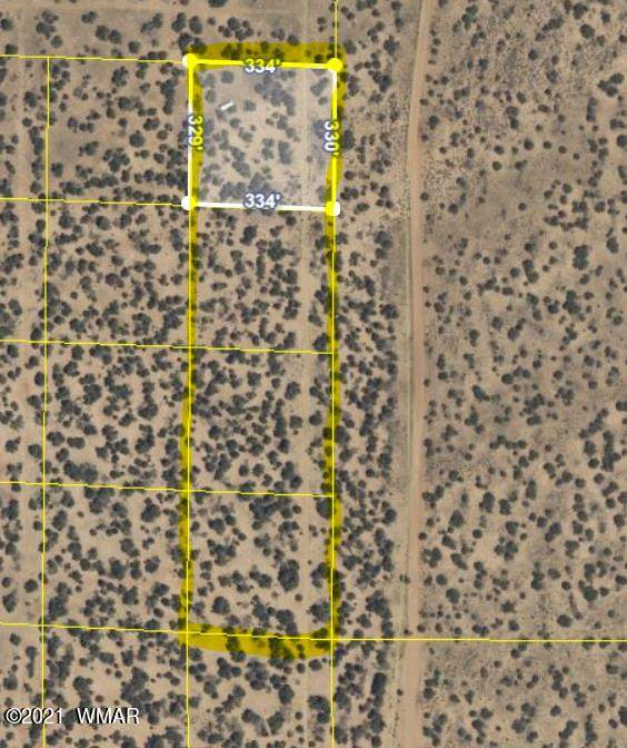 4 lots 10 Acres in Witch Wells, St. Johns, AZ 85936 (MLS #233387) :: Walters Realty Group