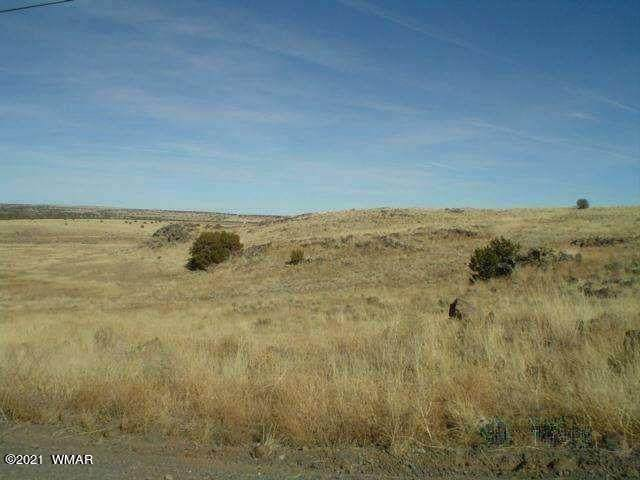 MM 361.9 To Mm 360.5 Hwy 61, Concho, AZ 85924 (MLS #234503) :: Walters Realty Group