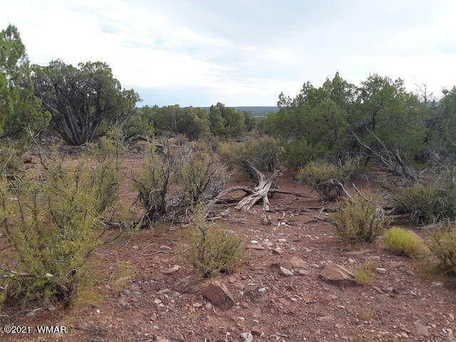 2733 Bradley Rd, White Mountain Lake, AZ 85912 (MLS #234953) :: Walters Realty Group
