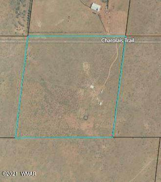 8175 Charolais Trail, Snowflake, AZ 85937 (MLS #235412) :: Walters Realty Group