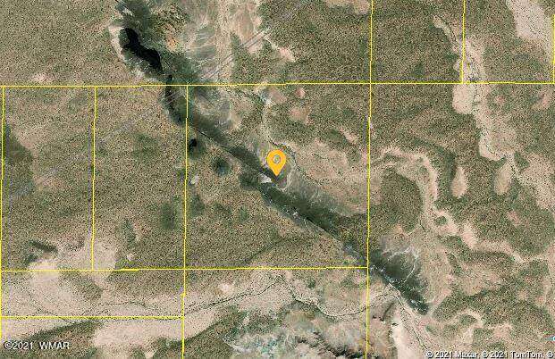 40 Acres Nw Of Holbrook, Holbrook, AZ 86025 (MLS #235836) :: Walters Realty Group