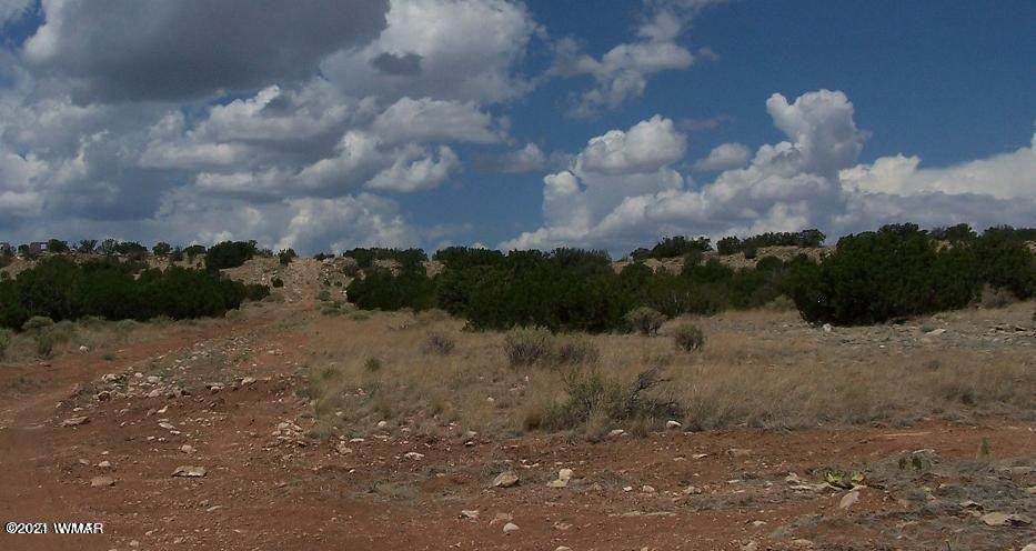 Lot 457 Chevelon Canyon Ranch - Photo 1