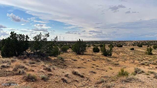 Lot 32 Snowflake Ranches - Photo 1