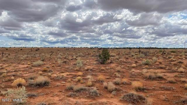 Lot 49 Snowflake Ranches - Photo 1