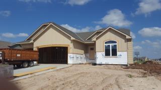 1016 N Oak Ridge, Goddard, KS 67052 (MLS #533991) :: Select Homes - Team Real Estate