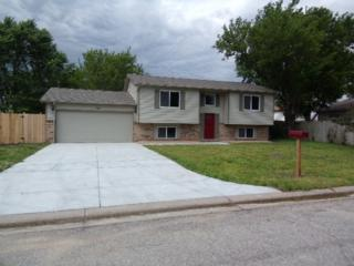 3209 N Cranberry St, Wichita, KS 67226 (MLS #535737) :: Glaves Realty