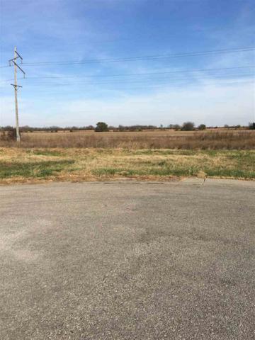 1036 E Bedell Ct, Augusta, KS 67010 (MLS #543826) :: On The Move