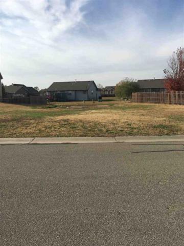 2805 N Birchwood Ct, Augusta, KS 67010 (MLS #543828) :: Glaves Realty