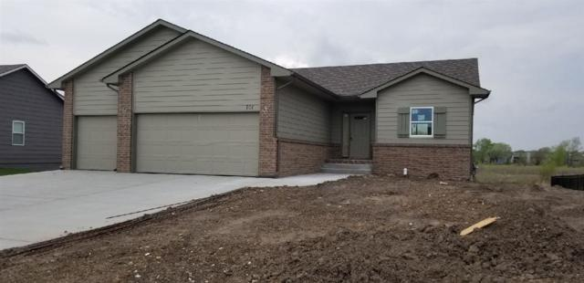 701 S Horseshoe Bend, Maize, KS 67101 (MLS #550585) :: On The Move