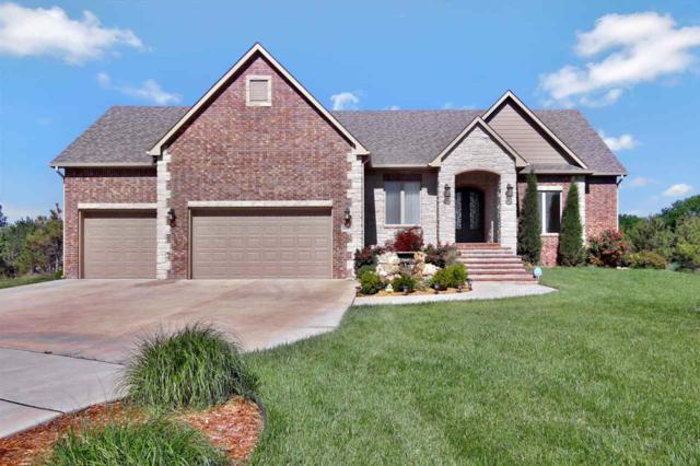 4127 N Fiddlers Cove St, Maize, KS 67101 (MLS #552207) :: On The Move
