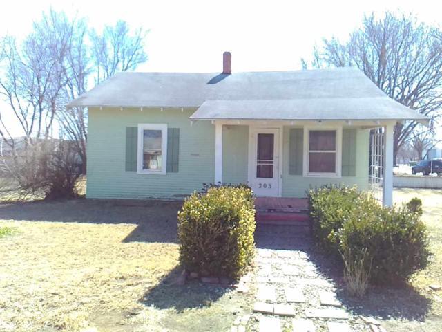 203 E Adams St, Burrton, KS 67020 (MLS #554943) :: On The Move