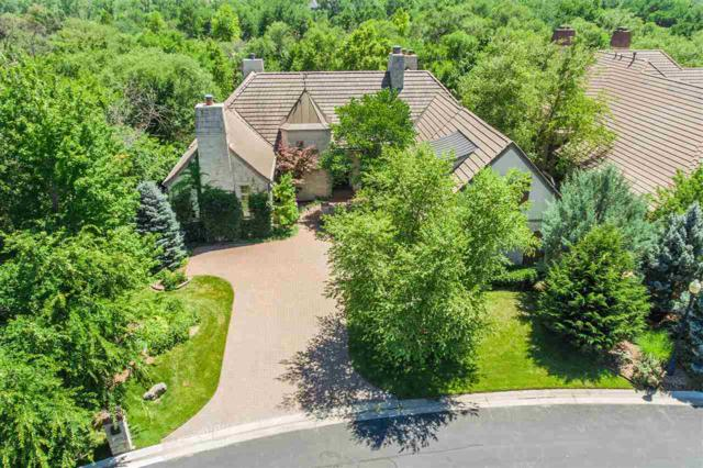 423 E Flint Hills National Ct, Andover, KS 67002 (MLS #565387) :: On The Move