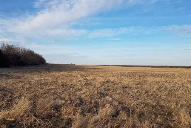 00000 S Hoover Rd 75.9 Ac in Sec , Wellington, KS 67152 (MLS #575782) :: On The Move