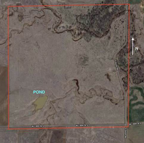 00000 W 130th St S, Caldwell, KS 67022 (MLS #576432) :: Lange Real Estate