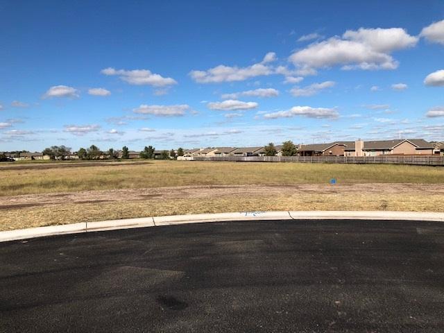 1628 N Bellick St, Wichita, KS 67235 (MLS #558128) :: Pinnacle Realty Group