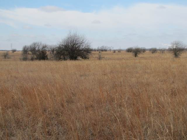 000 SE 20th St, El Dorado, KS 67042 (MLS #577633) :: On The Move