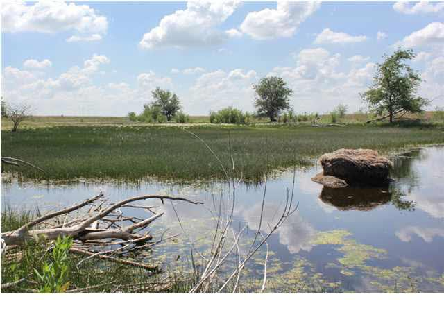 0 Nw/C Pleasant Valley Rd. & Yoder Rd, Haven, KS 67543 (MLS #368700) :: Better Homes and Gardens Real Estate Alliance