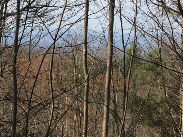 #14 Sweetwater Rd, Boomer, NC 28606 (MLS #64435) :: RE/MAX Impact Realty