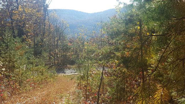 TBD Casey Mountain Rd, Purlear, NC 28665 (MLS #65378) :: RE/MAX Impact Realty