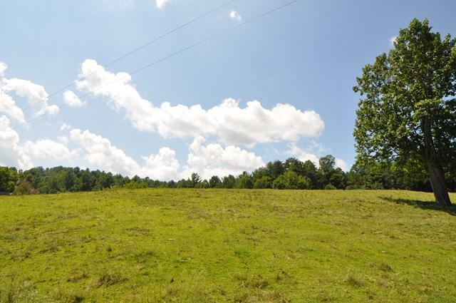 1744 Fishing Creek Arbor Rd, N Wilkesboro, NC 28659 (MLS #63685) :: RE/MAX Impact Realty