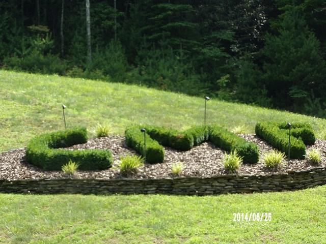 Lot 3 Chestnut Mountain Farms, McGrady, NC 28649 (MLS #63882) :: RE/MAX Impact Realty