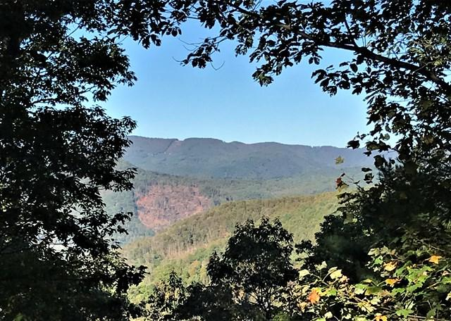 TBD Ashe View Dr, Millers Creek, NC 28651 (MLS #63888) :: RE/MAX Impact Realty