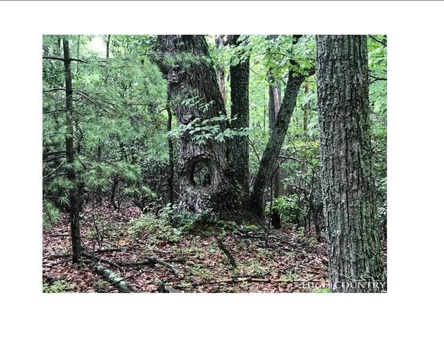 000 Vannoy Ridge Rd, Moravian Falls, NC 28654 (MLS #64043) :: RE/MAX Impact Realty