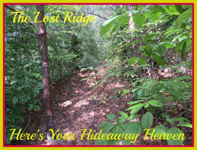 TBD Lost Ridge Rd, Lenoir, NC 28645 (MLS #64255) :: RE/MAX Impact Realty