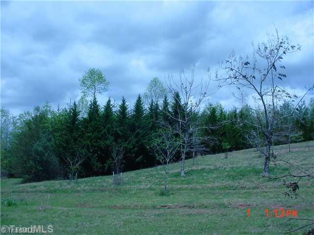 00 Traphill Rd, Traphill, NC 28685 (MLS #64921) :: RE/MAX Impact Realty