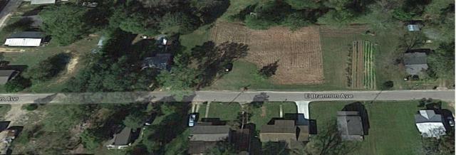00 E Brannon, Geneva, AL 36340 (MLS #20171427) :: Team Linda Simmons Real Estate