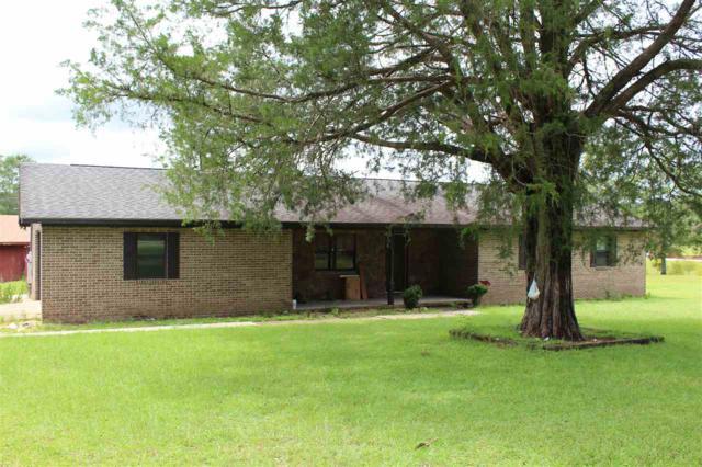 1901 County Road 233, New Brockton, AL 36352 (MLS #20171455) :: Team Linda Simmons Real Estate