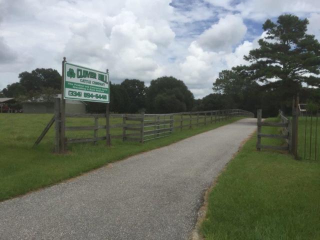 836 County Road 151, New Brockton, AL 36351 (MLS #20171553) :: Team Linda Simmons Real Estate