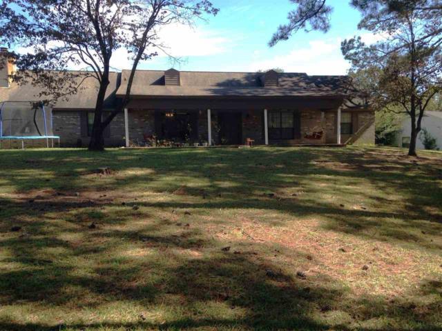 100 Michelle Court, Daleville, AL 36322 (MLS #20172019) :: Team Linda Simmons Real Estate